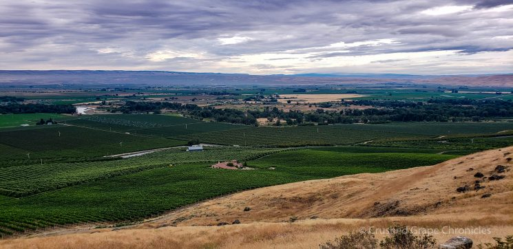 Roskamp Vineyard View on Snipes Mountain Yakima Valley Washington