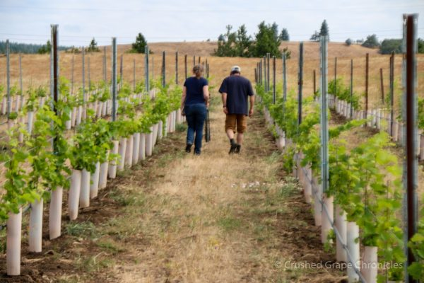 Myself & James Mantone walking the rows at Syncline