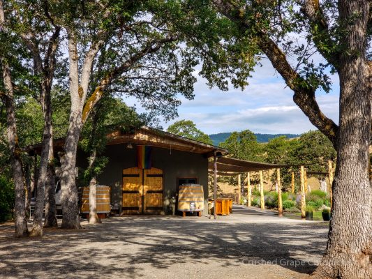 Syncline Winery in Washington Win in the Columbia Gorge AVA