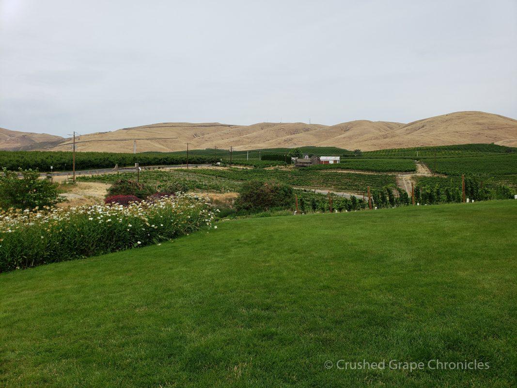 The lawn at Trevari