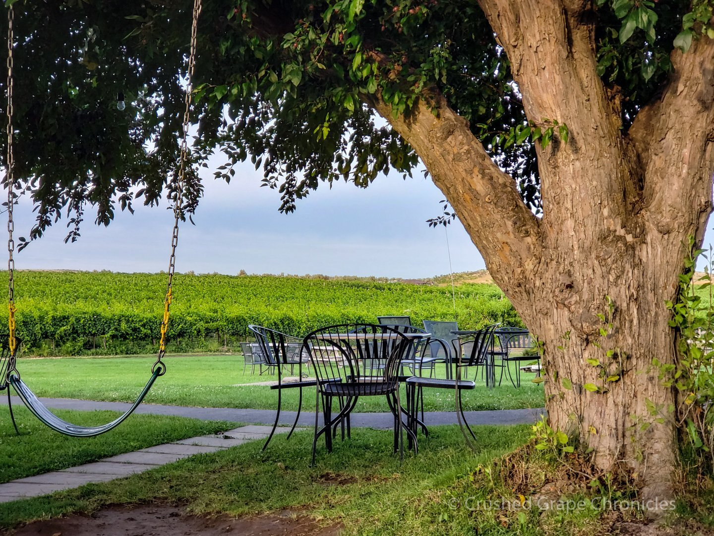 Tree swing and tables for enjoying a glass or a bottle at Wilridge Vineyard Naches Heights Washington