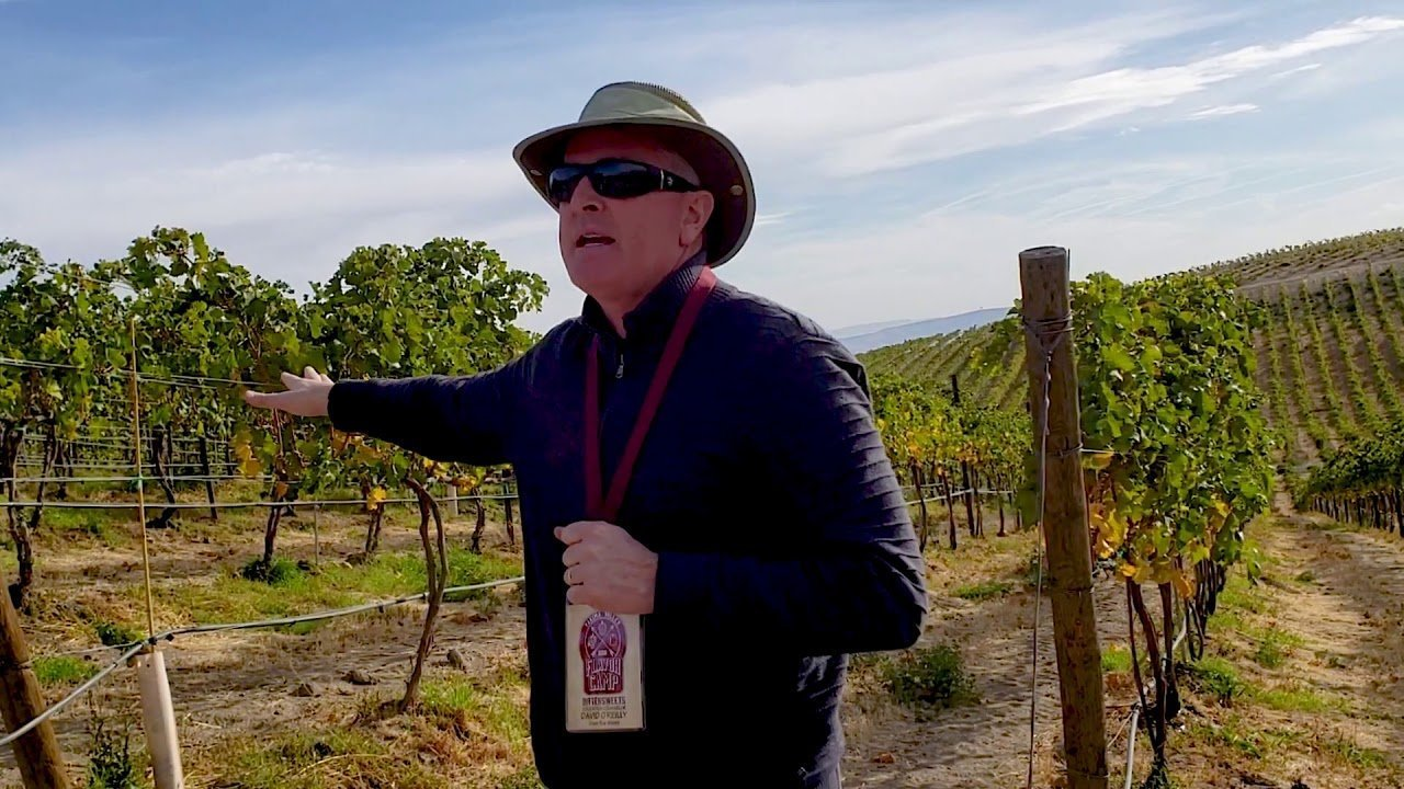 David O'Reilly at Owen Roe's Union Gap Vineyard