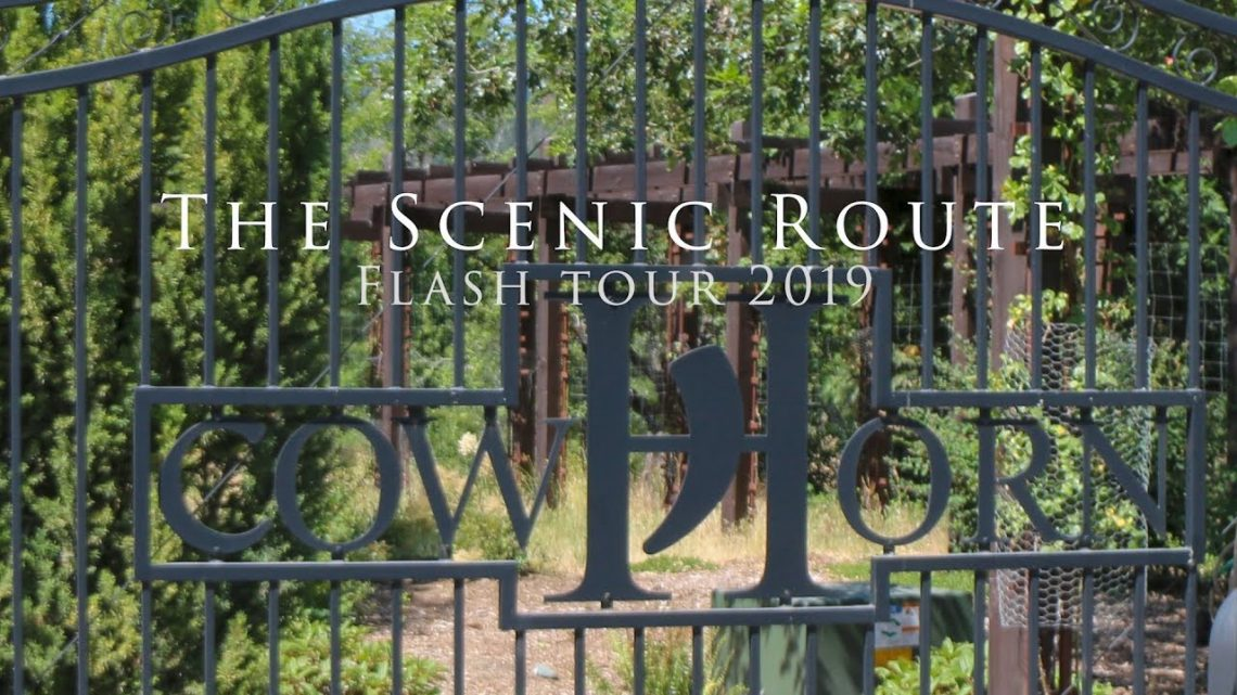 The Scenic Route Cowhorn Wine