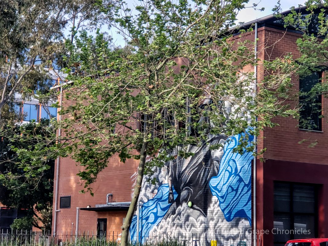 Wall murals in Newcastle, New South Wales, Australia