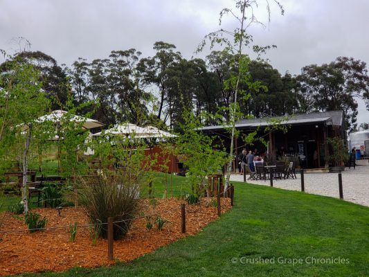 The Artemis Tasting room in the Vineyard New South Wales Australia