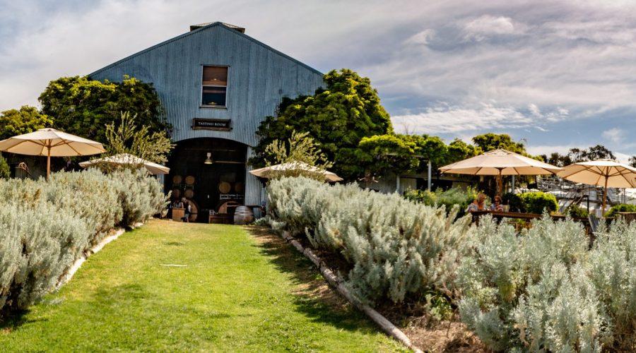 Lowe Wines in Mudgee Australia Cellar Door
