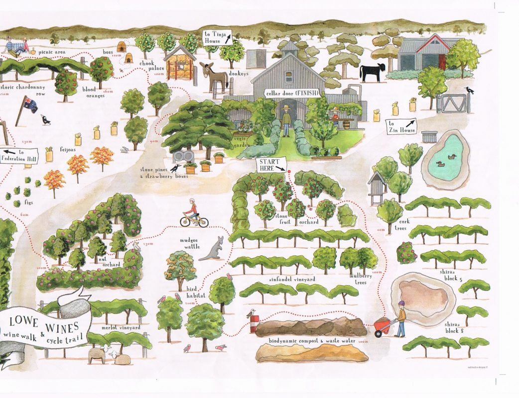 Local artist Rachael Flynn was commissioned to illustrate the tour via a map which is available at the cellar door.