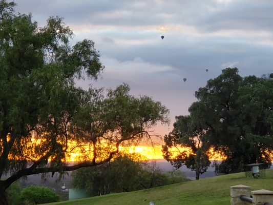 Balloons taking off in the Hunter Valley at Sunrise