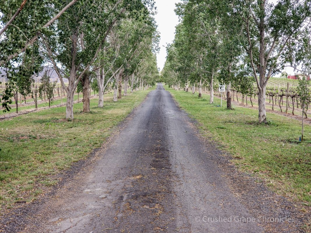The drive to the cellar door at First Ridge Mudgee NSW Australia