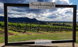 Scarbourgh Wine in Hunter Valley Australia Vineyard Social Media Spot