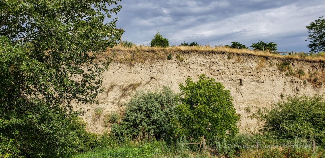 The bare cliff wall below the Audrey block at Amstrong Family Winery's Valley Grove Vineyard