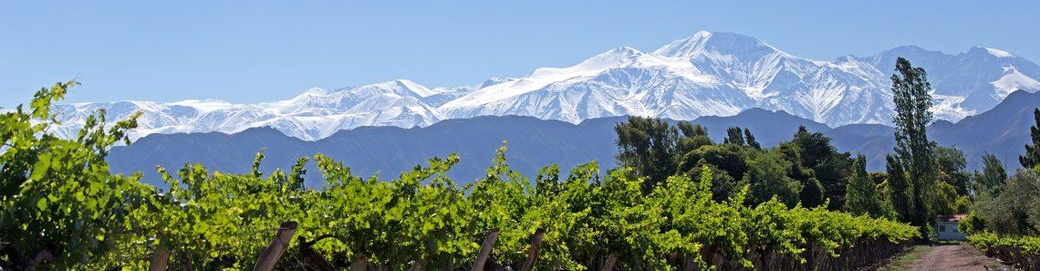 Andes & Vineyard Lujan d Cuyo Mendoza
