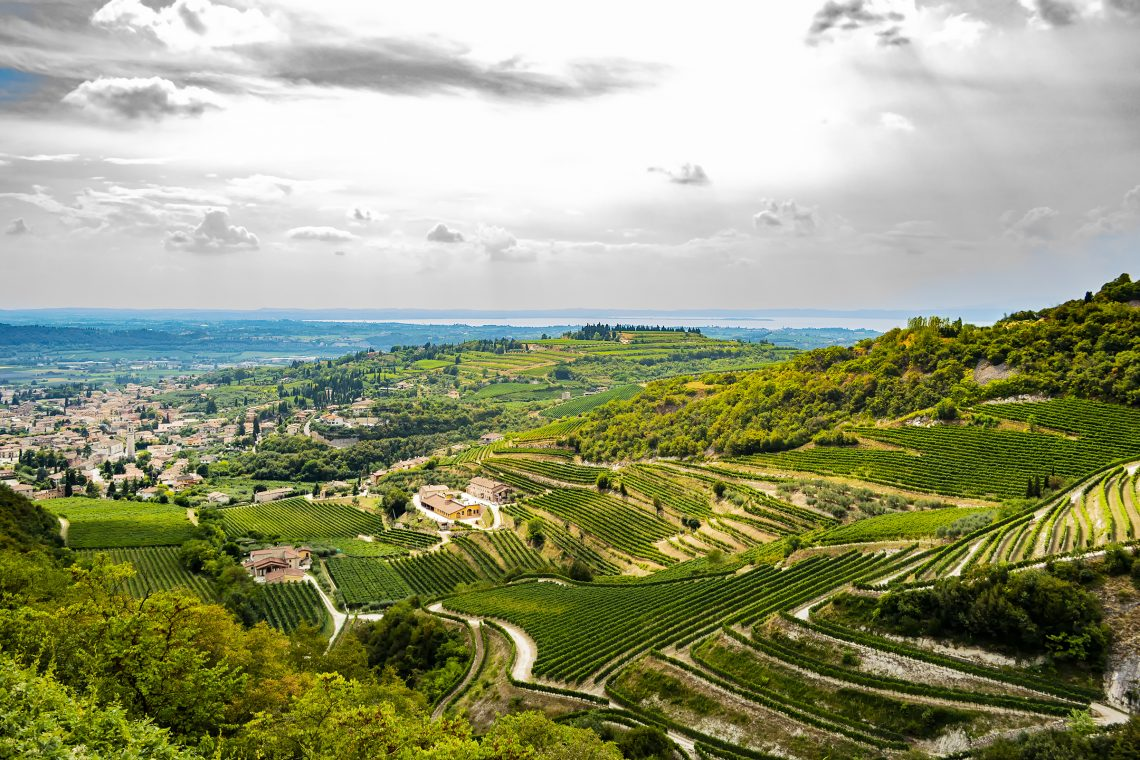 Beautiful panoramic view on Valpolicella from San Giorgio in the province of Verona-Italy