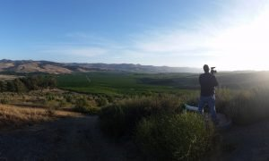 Michael-Panorama in Vineyard