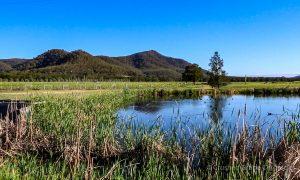 The pond for irrigation at Krinklewood biodynamic vineyard NSW Australia