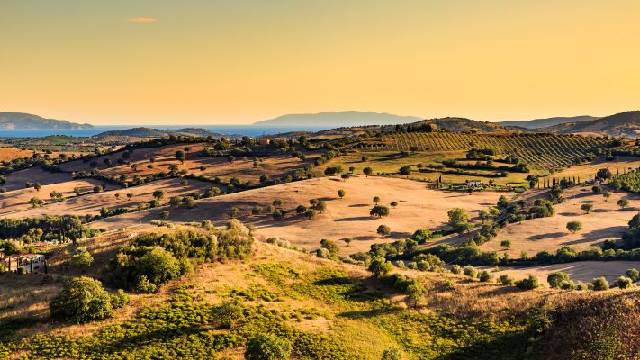 View of tuscan fields and hills in Maremma region