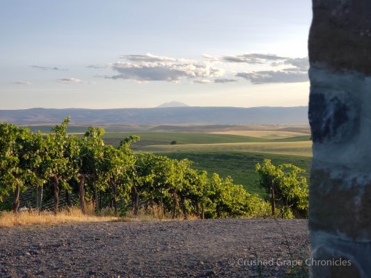 Behind the chapel the view of Mt. Adams, from Red Willow Vineyard in Yakima Valley AVA in Washington State