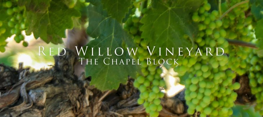 Red Willow Vineyard – The Chapel Block