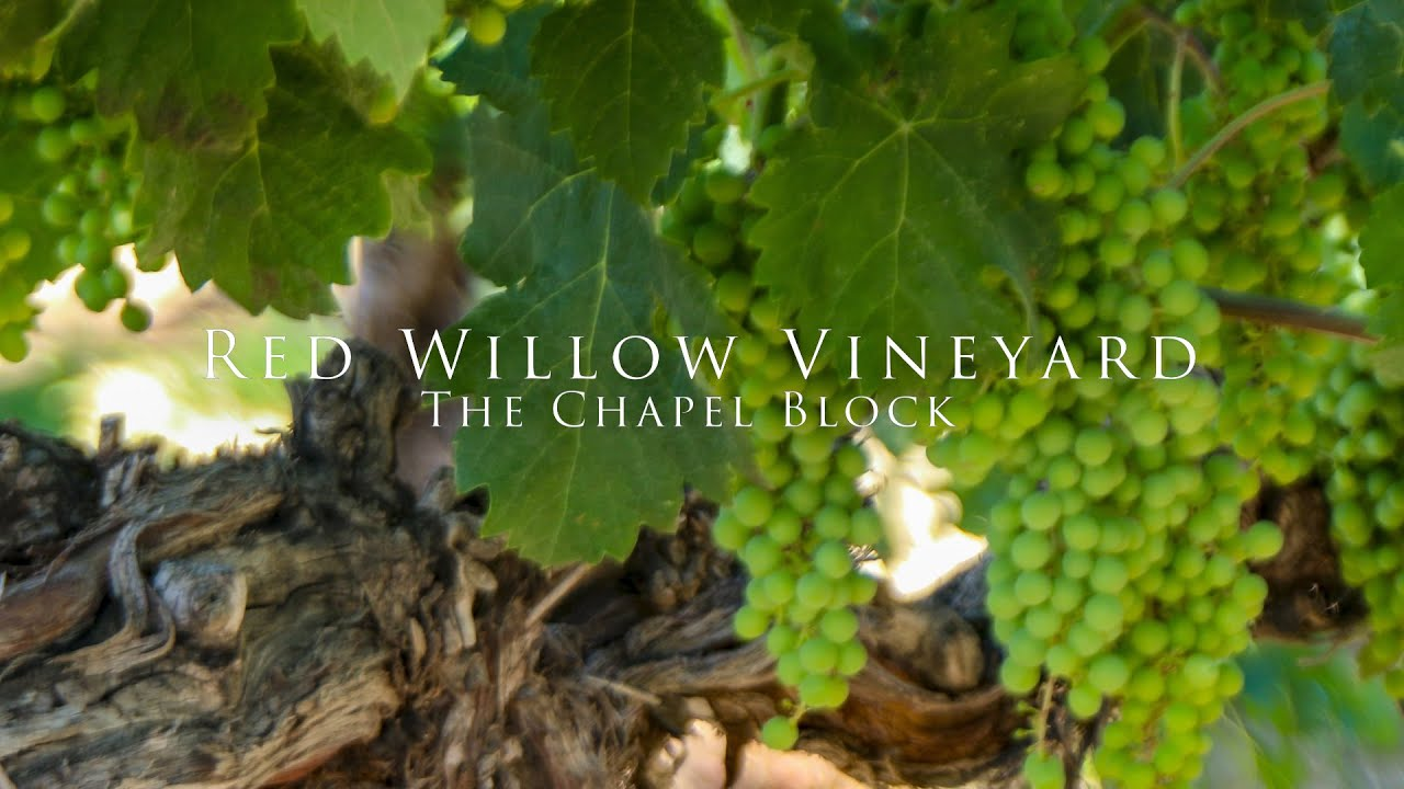 Red Willow Vineyard – The Chapel Block