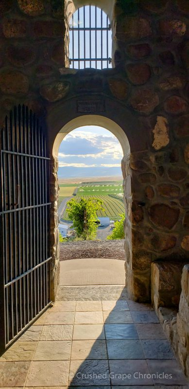 Looking out at the vineyard through the Chapel door at Red Willow Vineyard