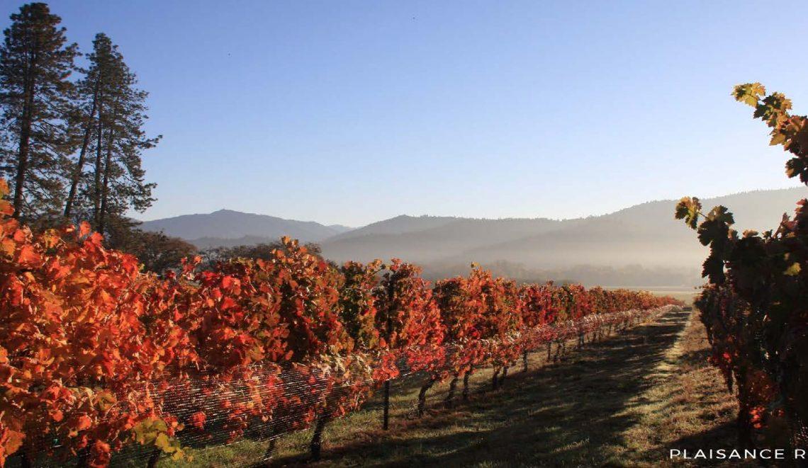 Troon Vineyard in Applegate Valley Oregon Photo Courtesy of Oregon Wine Board