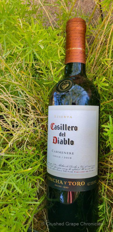 Reserva Casillera del Diablo from Chile