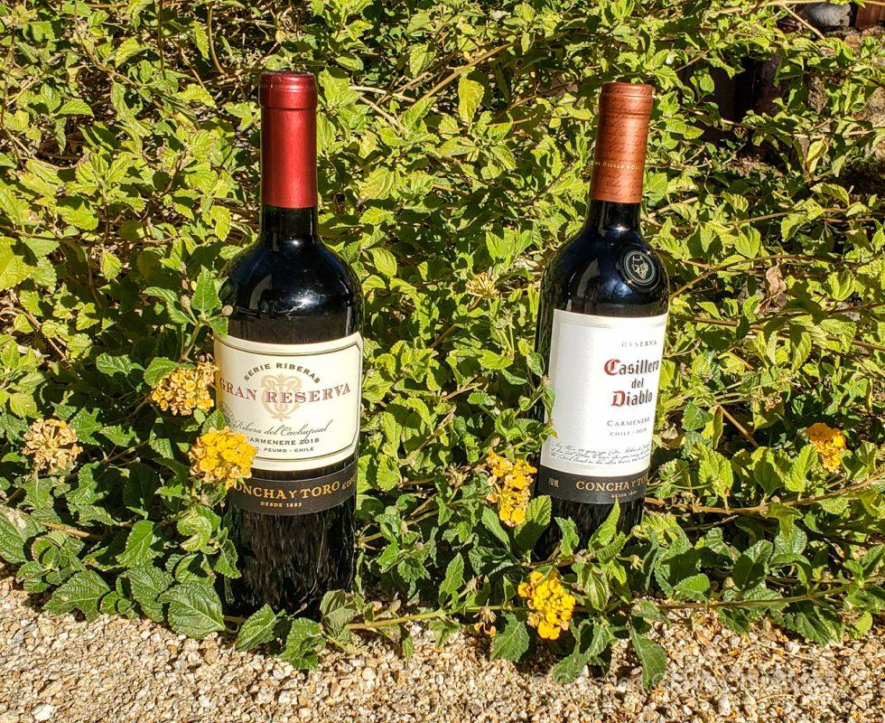 Carmenere Gran Reserva and Casillera del Diablo from Chile