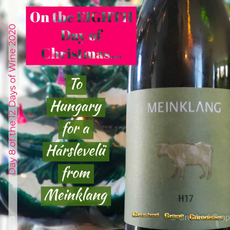 on the Eighth Day of Christmas, My true love gave to me, Day 8 2020 Meinklang h17