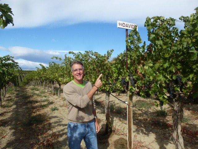 David's Block at the Red Willow Vinyard in Washington's Yakima Valley (photo courtesy Eight Bells Wine)