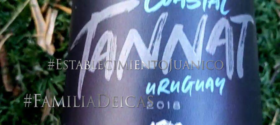 Tannat at home in Uruguay