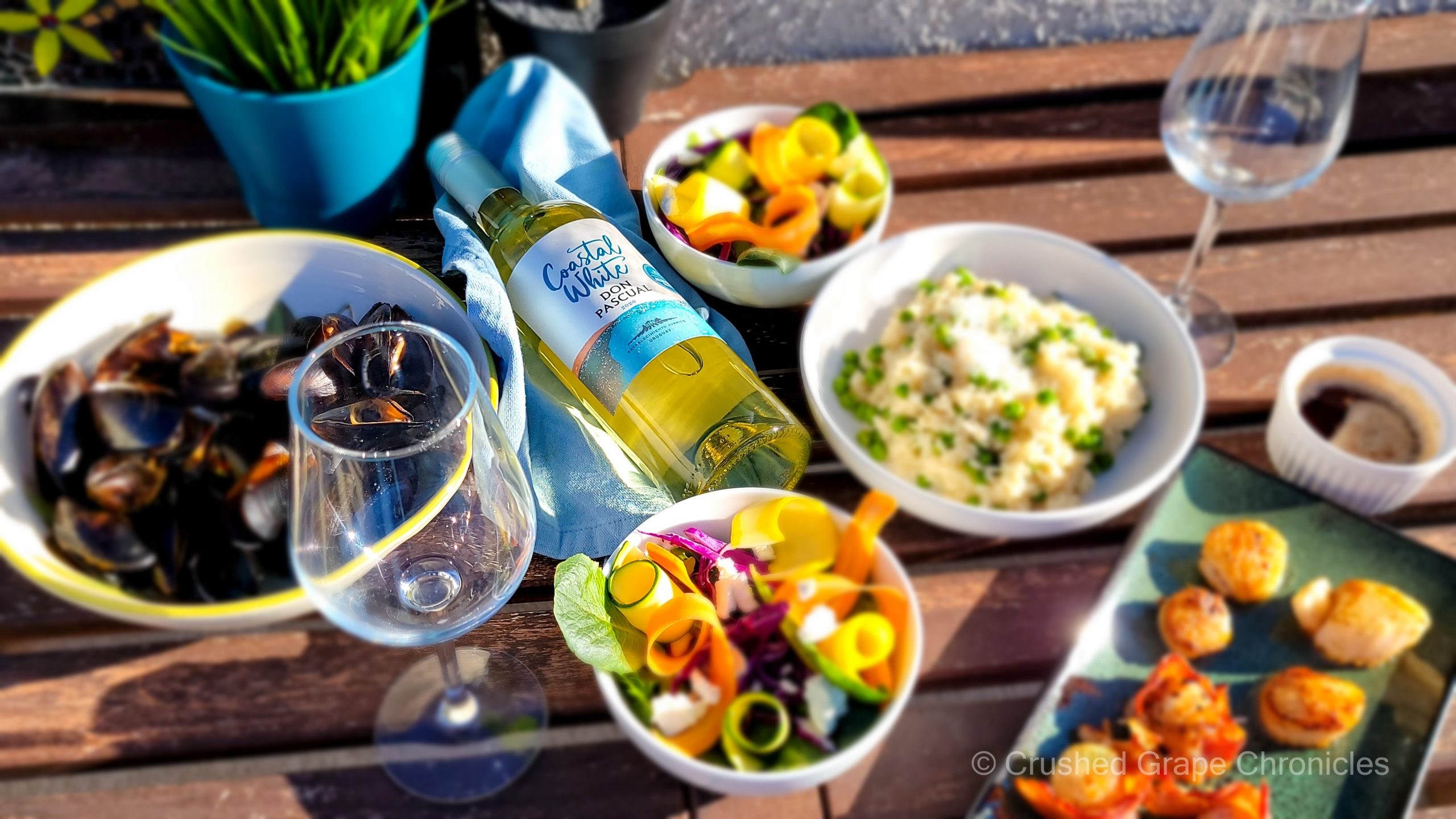Coastal White from Uruguay by Don Pasqual with Seafood Feast on the Rooftop Deck