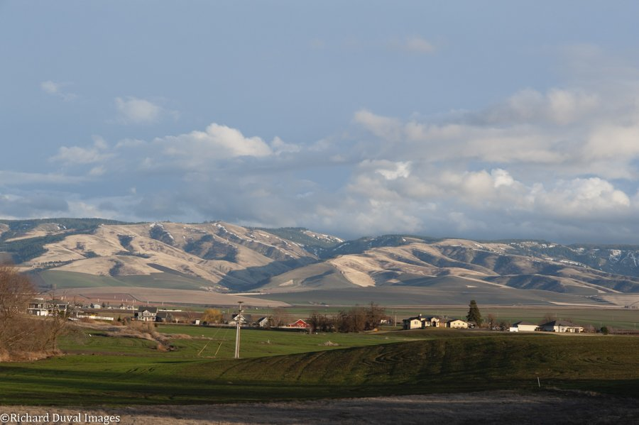 The View from Caprio Cellars Walla Walla WA (Courtesy Caprio Cellars by Richard Duval Images)