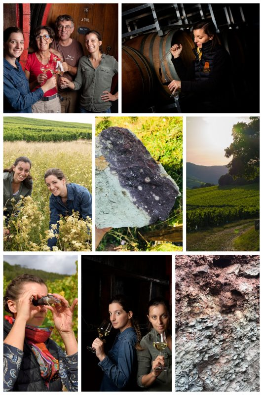 Domaine Sohler Philippe Alsace collage (photos courtesy Domaine Sohler Philippe)