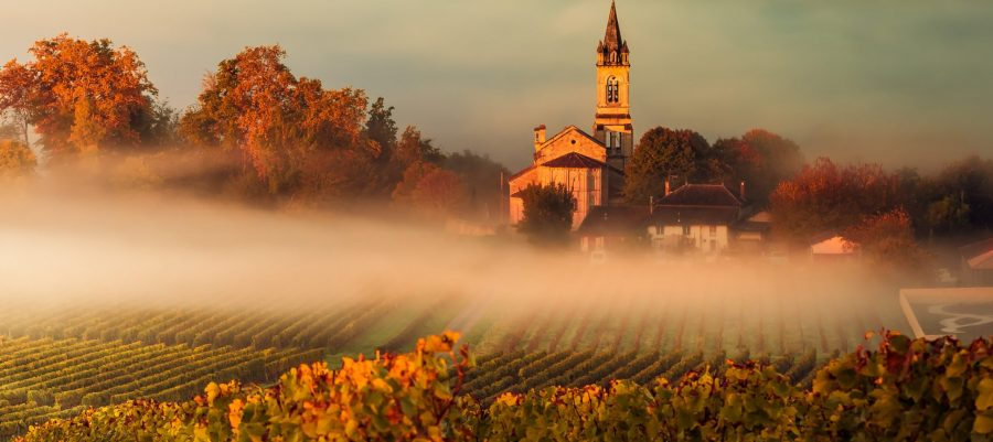 Early morning fog in Bordeaux Photo Courtesy Bordeaux Wines