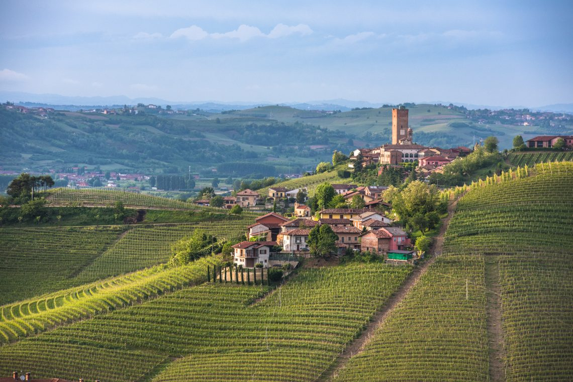 Panorama of Piedmont vineyards and Barbaresco town (Adobe Stock by javarman)