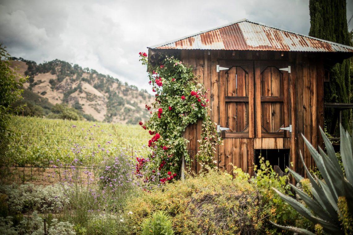 Bonterra's McNab Ranch